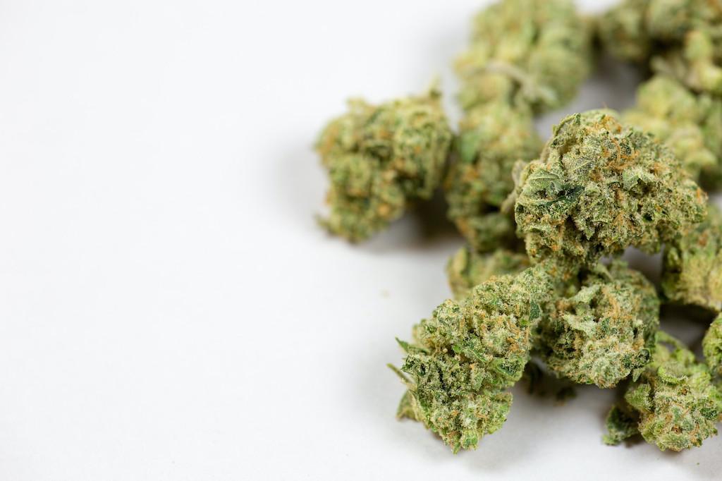 close up of marijuana bud on white background